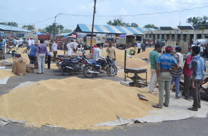 २१ अगस्त से नीमच कृषि उपज मंडी रहेगी अनिश्चितकाल के लिए बंद