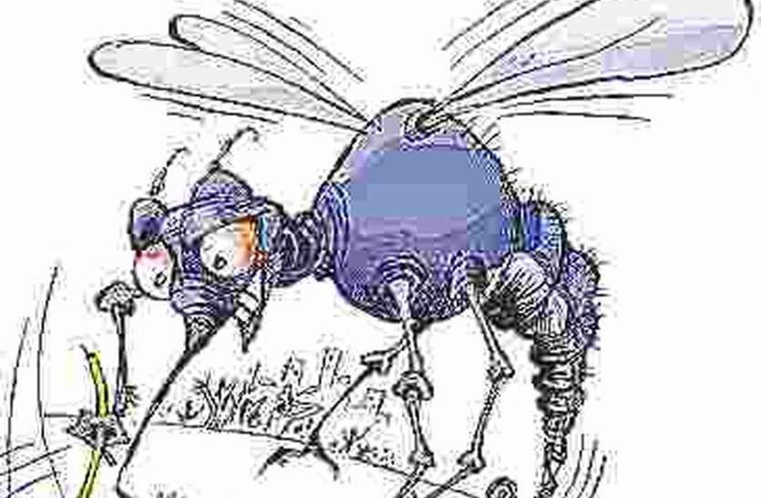 डेंगू और मलेरिया की जिले में आमद