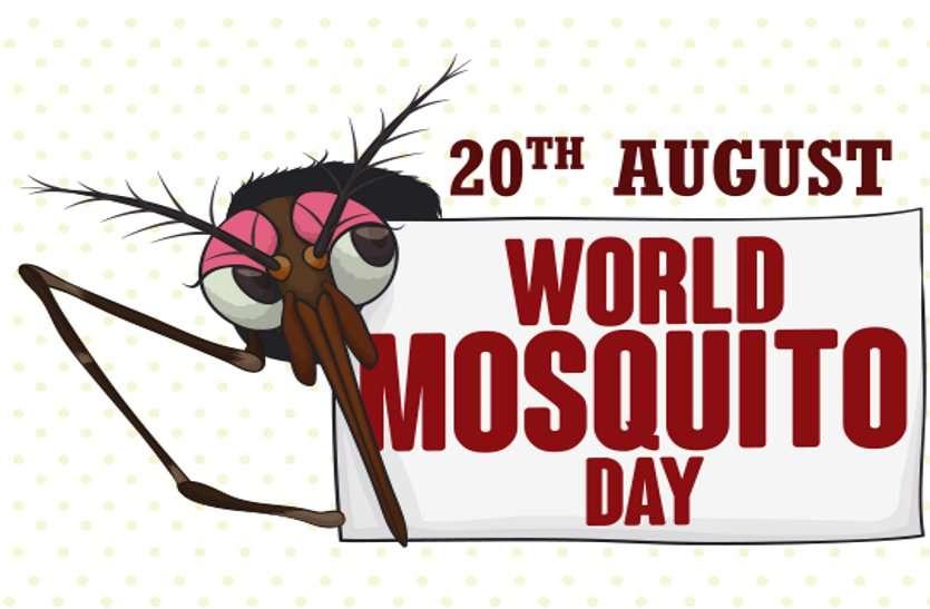 World Mosquito Day : इन तीन तरह के मच्छरों से आप भी रहें बचकर, जो जानलेवा बीमारियों के वाहक हैं