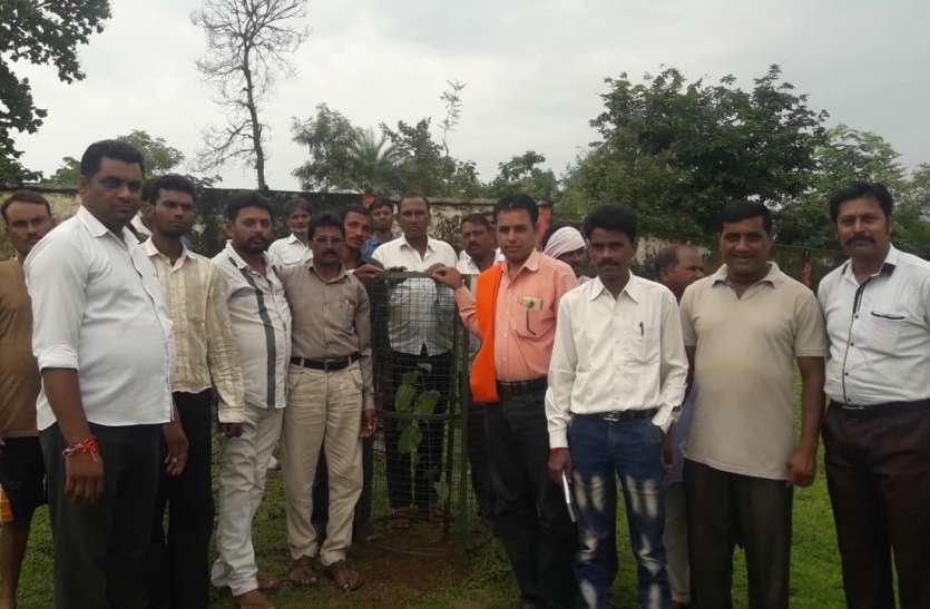 किसानों संगठन ने भगवान बलराम की पूजा कर किया पौधरोपण