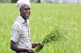 किसानों को मिलेंगे 50,000 रुपए, सरकार की इस स्कीम का मिलेगा फायदा