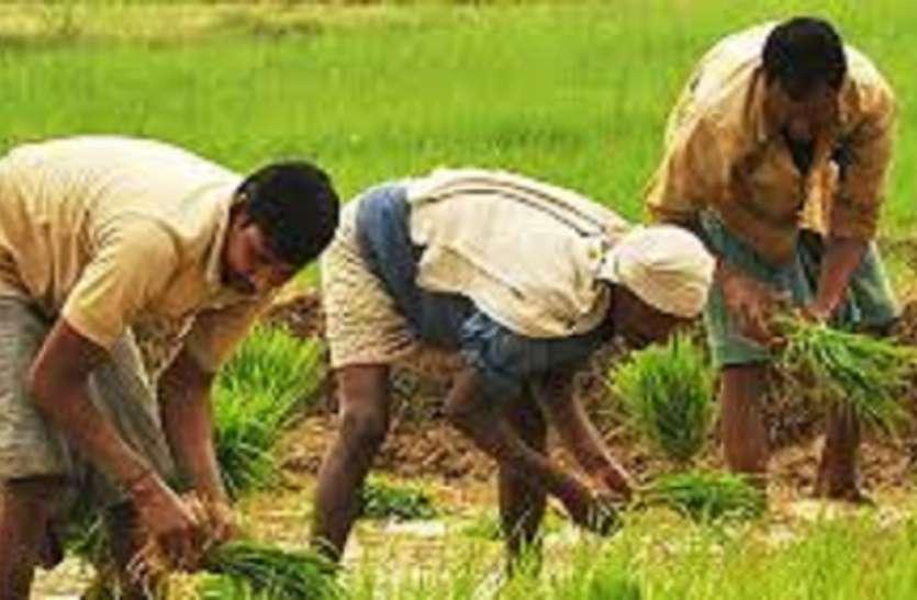 बंगाल के किसानों के लिए यह है खुशखबरी...