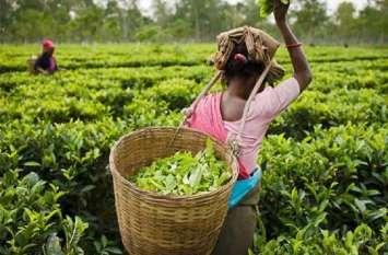 मंदी से उबरना नहीं आसान, अब चाय के प्याले में भी 'तूफान'