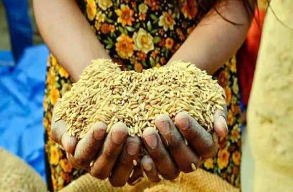 Food Security List में जनप्रतिनिधि, Government Worker कार्मिक और पेंशनर
