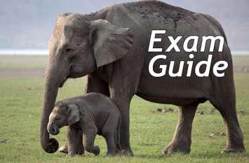 Exam Guide: इस टेस्ट से जांचे सामान्य ज्ञान के एग्जाम की तैयारी