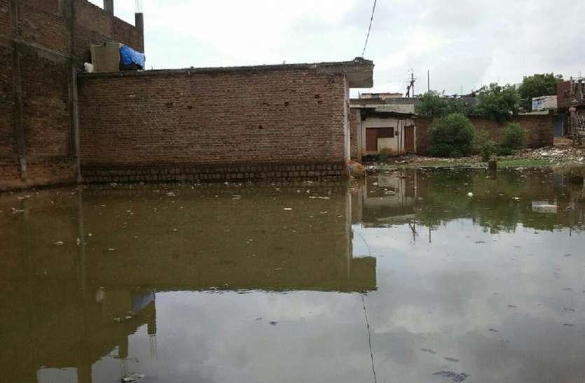 Risk of infectious diseases : बारिश के कारण कॉलोनियों में हुए जलभराव,  संक्रामक बीमारियां फैलने का बना खतरा