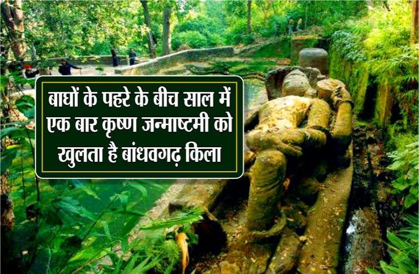 ये है दुनिया का एकलौता मंदिर जो 365 दिन में सिर्फ खुलता है एक बार, 2 हजार साल से कायम है ये परम्परा