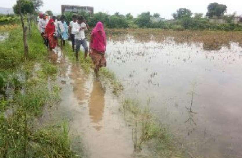 बरसाती पानी से फसलें जलमग्न, मुआवजा दिलाने की मांग