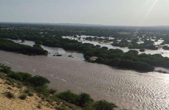 कच्छ के रण में हो रही  लूणी नदी के पानी की फिजूलखर्ची