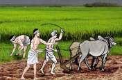 Haryana: आखिर कैसे दोगुनी होगी किसानों की आय
