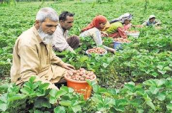 बिहार में छह लाख किसानों को नहीं मिल पाएगा योजना का लाभ