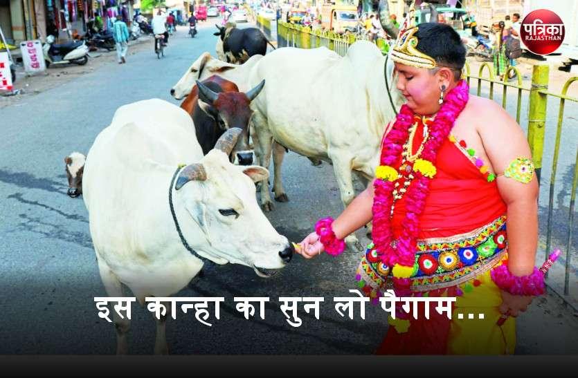 गोपाल का पैगाम : 'बांसवाड़ा की सडक़ों पर घूम रहे पशुओं को रखने की व्यवस्था कराएं, आमजन की सुरक्षा का संकल्प उठाएं'