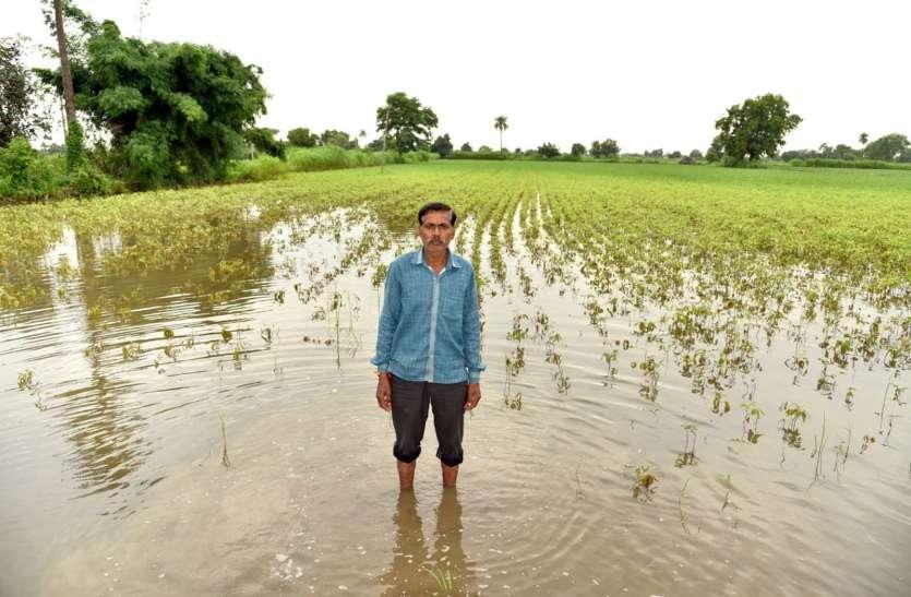 पानी से भरे खेतों में चौपट हो रही फसलों के साथ किसानों की उम्मी