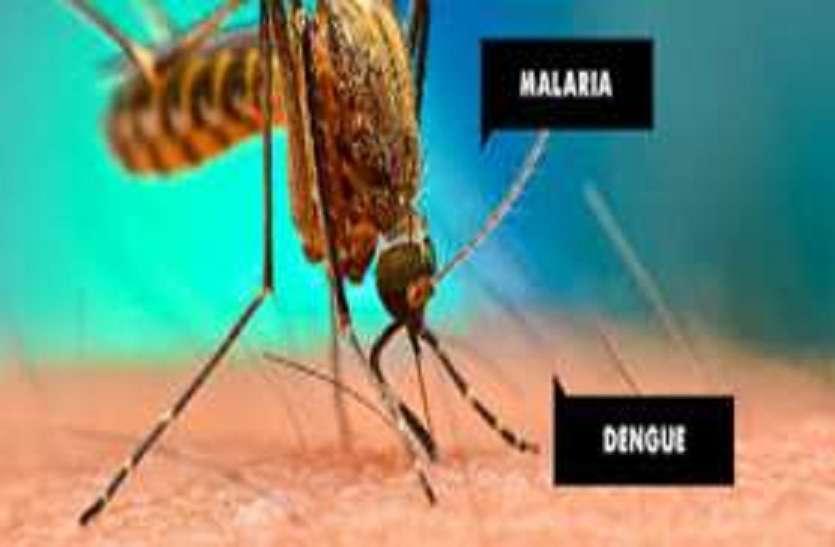 अब मलेरिया नहीं मार सकेगा डंक,डेंंगू से भी राहत