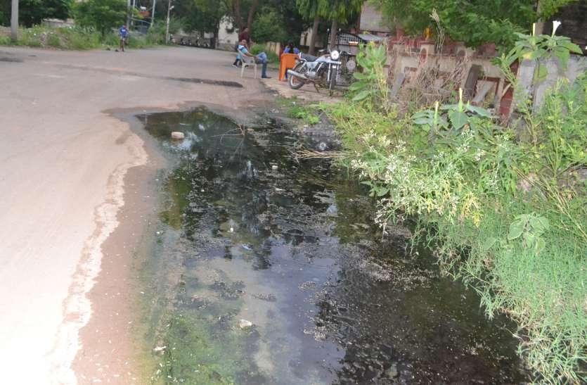 Nagar Palika फिजूलखर्ची में कर रहे लाखों खर्च, स्वास्थ्य पर नहीं ध्यान