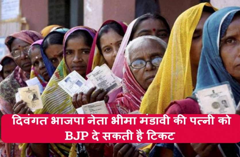 विस उपचुनाव: चित्रकोट में नए चेहरे और दंतेवाड़ा में ओजस्वी मंडावी पर दांव खेलने की BJP कर रही तैयारी