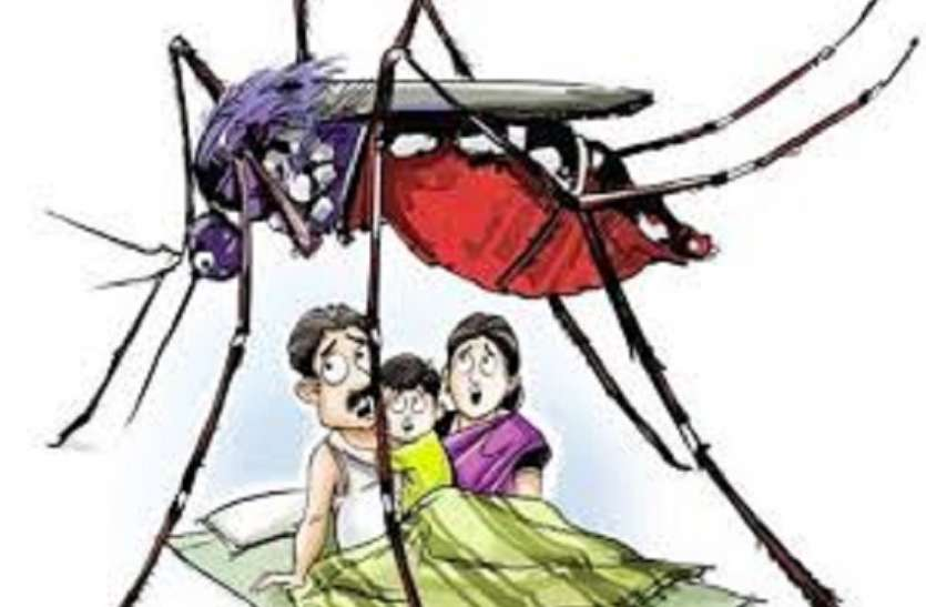 KMC- डेंगू अभियान : नेश्नल लाइब्रेरी को नोटिस, एसएसकेएम अस्पताल पास