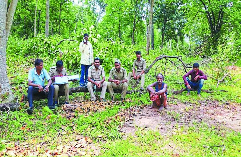 टाइगर रिजर्व जंगल क्षेत्र में सैकड़ों कीमती वृक्षों की अवैध कटाई करने वाले 4 आरोपी हुए गिरफ्तार