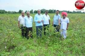 VIDEO : किसानों की उम्मीदों पर फिरा पानी, जानिए पूरी खबर