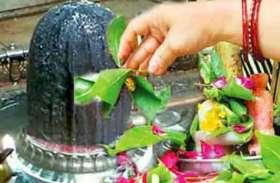 हरतालिका तीज पर भोलेनाथ को अर्पित करें इन 16 तरह की पत्तियों को, मिलता है विशेष आशीर्वाद
