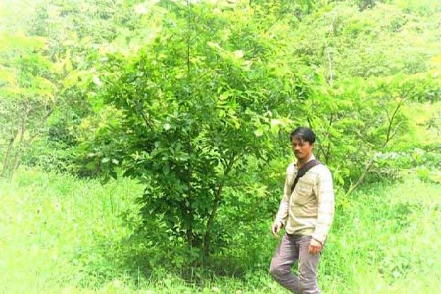 अकेले दम पर उगाया जंगल, सब चेते तो धरती पर होगा मंगल