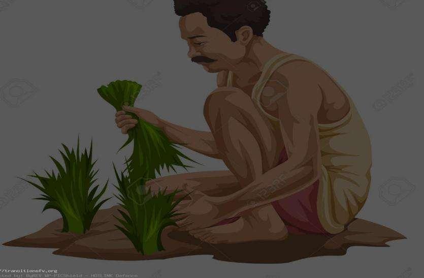 जिले के 20 हजार 790 किसानों को मिलेंगे 9 करोड 95 लाख रुपए