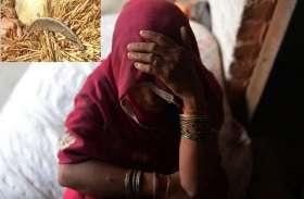 खेत में युवक कर रहा था बलात्कार का प्रयास, बचाव में महिला ने दरांती से किया सिर पर वार
