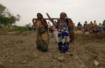 अर्थव्यवस्था में कृषि की भूमिका बदली, अब खेती के बजाए सर्विस सेक्टर दिखाता है प्रदेश के विकास की तस्वीर