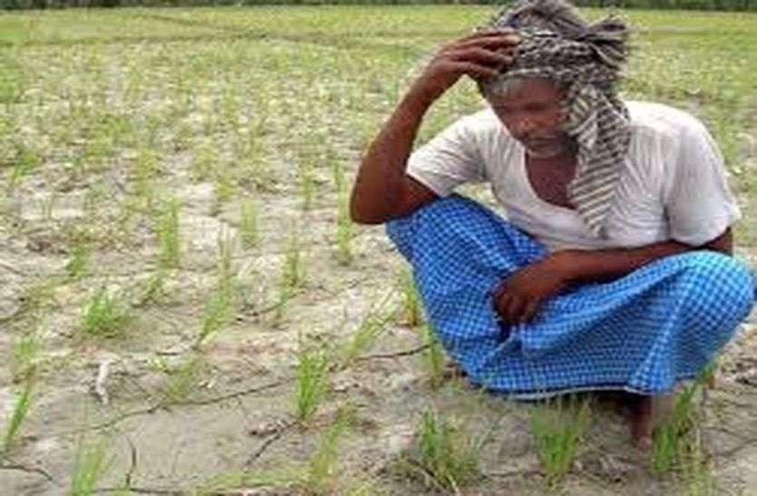 Weather Alert-पूर्वांचल में अब तक 17 प्रतिशत कम हुई बारिश