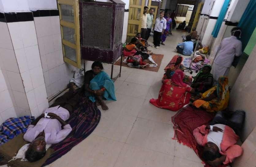 13 वार्ड, 300 बेड और 400 मरीजों की भर्ती