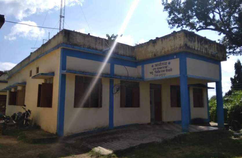 मवेशियों का उपचार भगवान भरोसे, 8 चिकित्सकों के भरोसे जिले की 282 ग्राम पंचायत