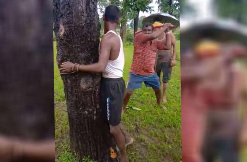 पहले पेड़ से बांधा फिर लाठियों से पीटा, मदद के लिए चिल्लाता रहा युवक, ग्रामीणों ने कहा- बच्चा चोर है