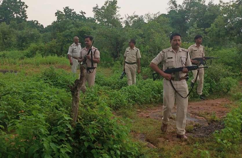 बबली गिरोह को रोकने जंगल में उतरी रीवा पुलिस