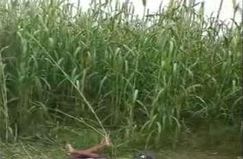 Crime in UP ननदोई के लिए पति की हत्या, शव बाजरे के खेत में फेंका, कारण है चौंकाने वाला, देखें वीडियो