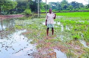 इस खेत की फसल हो गई चौपट, बचा तो सिर्फ कंकड़, रेत और पानी
