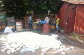 बीएसपी ने कचरा उठाना बंद कर दो दिनों तक बांटी, डेंगू के लार्वा को मारने की दवा