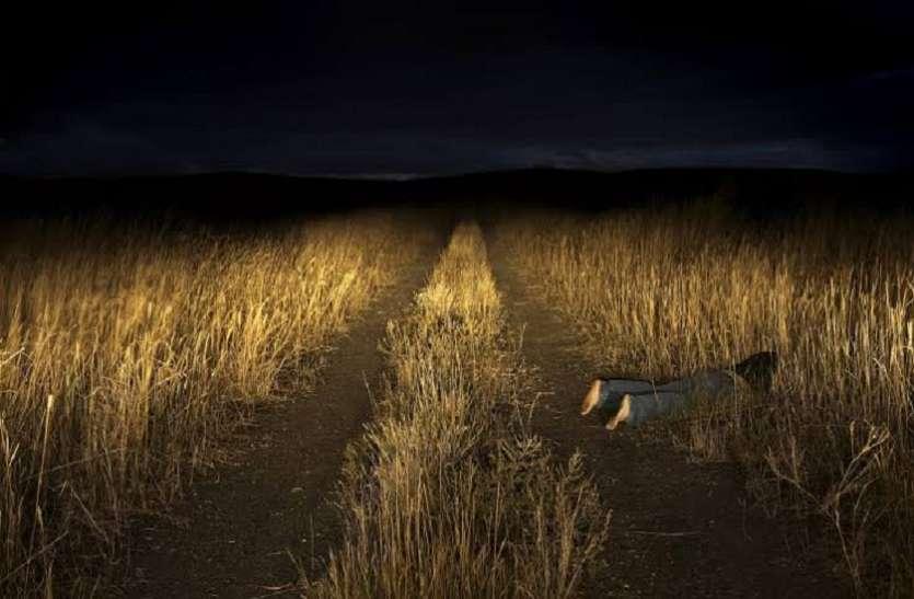 मौत के एक साल बाद तक घूमती है इंसान की डेड बॉडी, ऑस्ट्रेलिया की वैज्ञानिक का दावा
