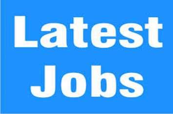 सहायक शिक्षकों की982 पदों पर होगी भर्ती, जानिए कैसे करें आवेदन, क्या होनी चाहिए योग्यताएं