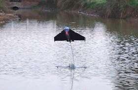 'फ्लाइंग फिश' रोबोट जो बाढ़ में करेगा मदद
