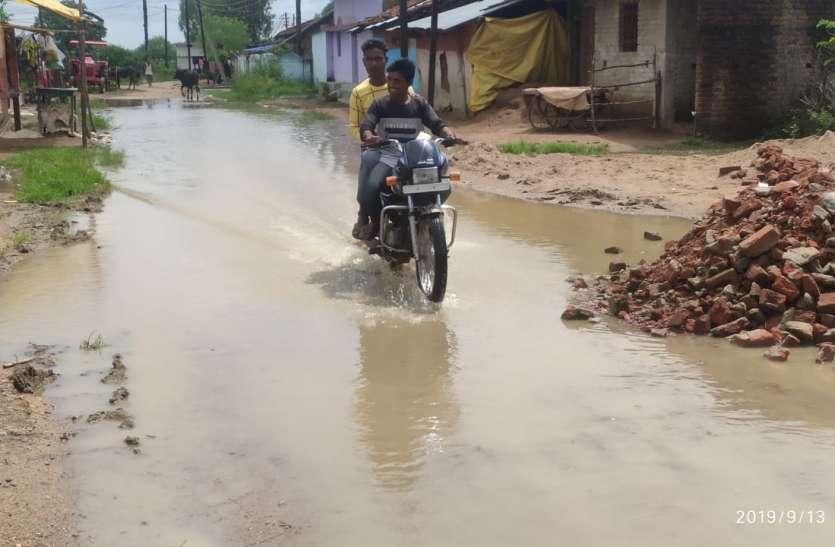 बारिश के पानी में वार्ड की सडक़ बन गई दरिया, जलनिकासी के अभाव में पैदल चलना हुआ दुभर