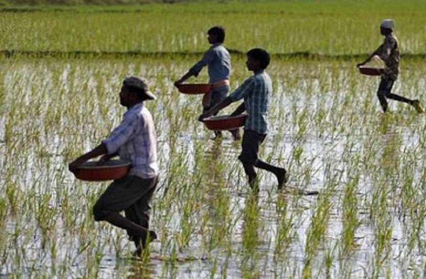 किसानों के लिए खुशखबरी, जयपुर जिले के किसानों को 1177 करोड़ का लोन देगी सरकार
