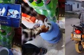 दूधिया ने सरस की थैली खरीदी,फाड़ी,कैन में भरी और दूध बिक्री के लिए तैयार देखे तस्वीरे