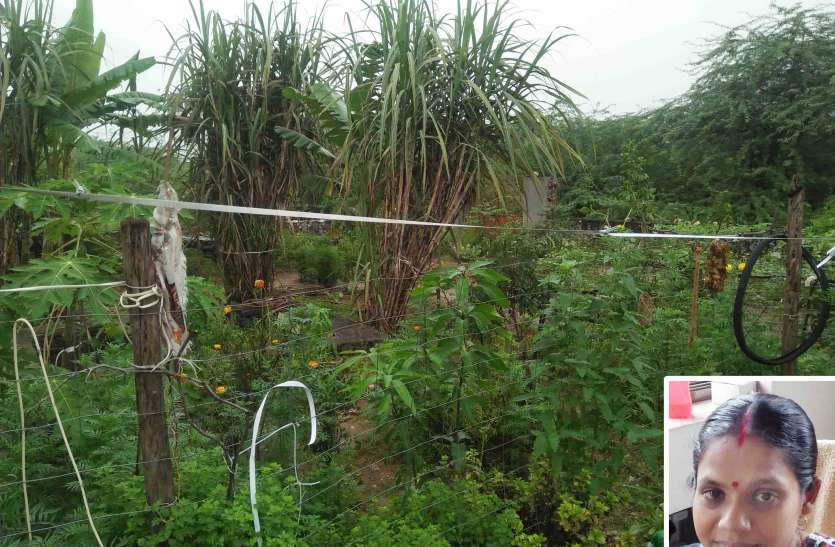 जल संरक्षण की अनूठी मिसाल, पुनर्चक्रित पानी से विकसित कर दिया बगीचा
