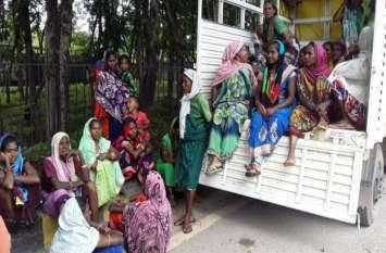 महुआ शराब के गोरख धंधे से पूरा गांव हो गया बर्बाद, महिलाओं ने कलेक्टर से की शिकायत