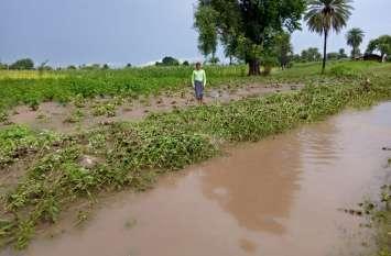 रोते किसान गा रहे 'अब मत बरस म्हारा इंदरराजा'