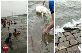 चंबल के रौद्र रूप की शिकार बनी हजारो मछलिया भी, उफान के साथ लग रही किनारे,तीन युवक मछली पकड़ने चंबल में कूदे तो जान के पड गए लाले