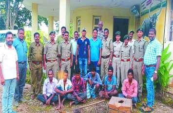 उदंती सीतानदी अभ्यारण्य से पकड़े गए थे शावक, पुलिस ने 6 आरोपियों को भेजा जेल