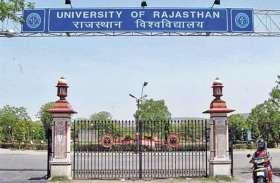 ज्यादा बारिश ने बिगाड़ी राजस्थान विश्वविद्यालय में तैयार हो रही गुलदाउदी सेहत
