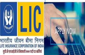 LIC Job in UP : यूपी में एलआईसी ने निकाली 8000 पदों पर भर्तियां, मिलेगा 40 हजार प्रतिमाह वेतन