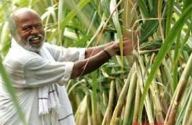 गन्ना मूल्य में 10 रुपये प्रति क्विंटल की वृद्धि, मंत्री ने कहा- यह किसानों संग भद्दा मजाक
